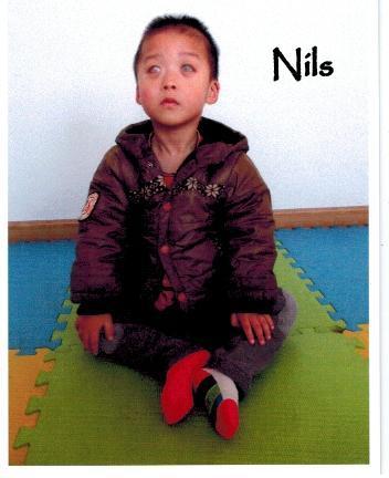 Nils1